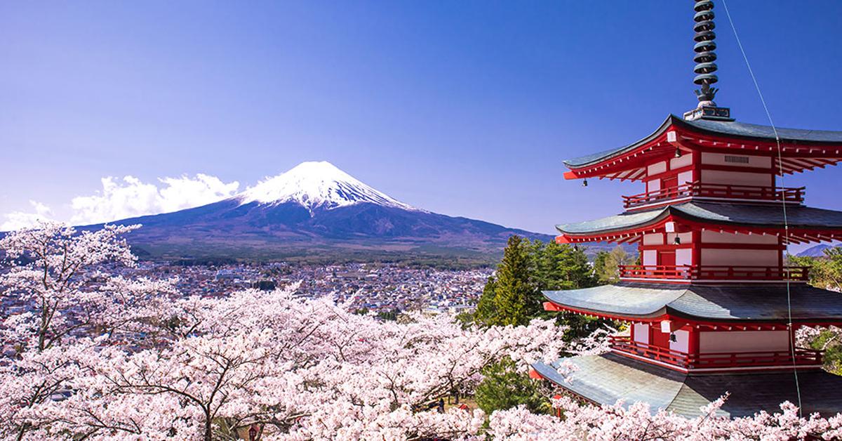 Hướng dẫn thủ tục xin visa Nhật Bản chi tiết nhất
