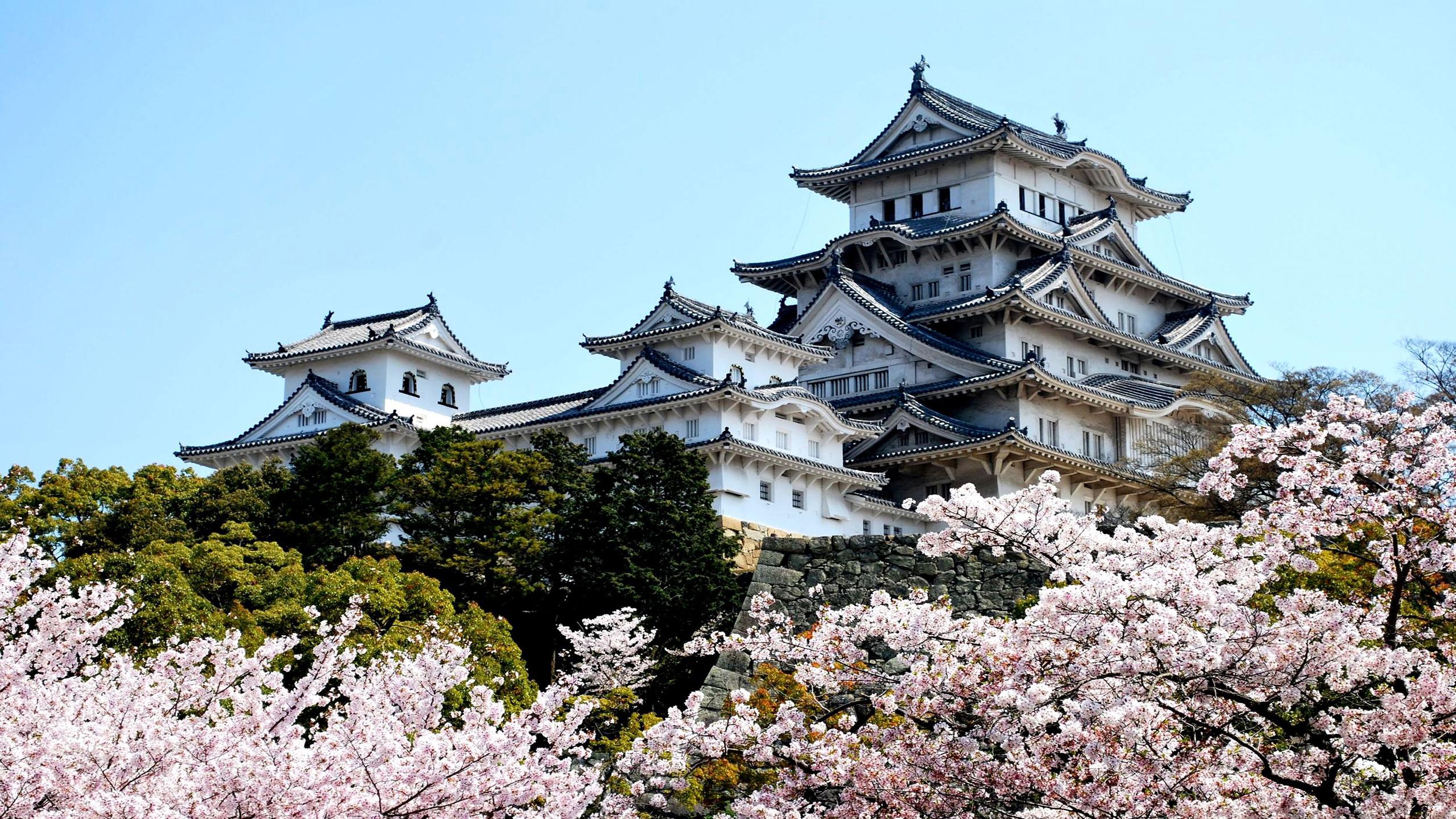 Những lễ hội độc đáo tại Nhật Bản mùa du lịch