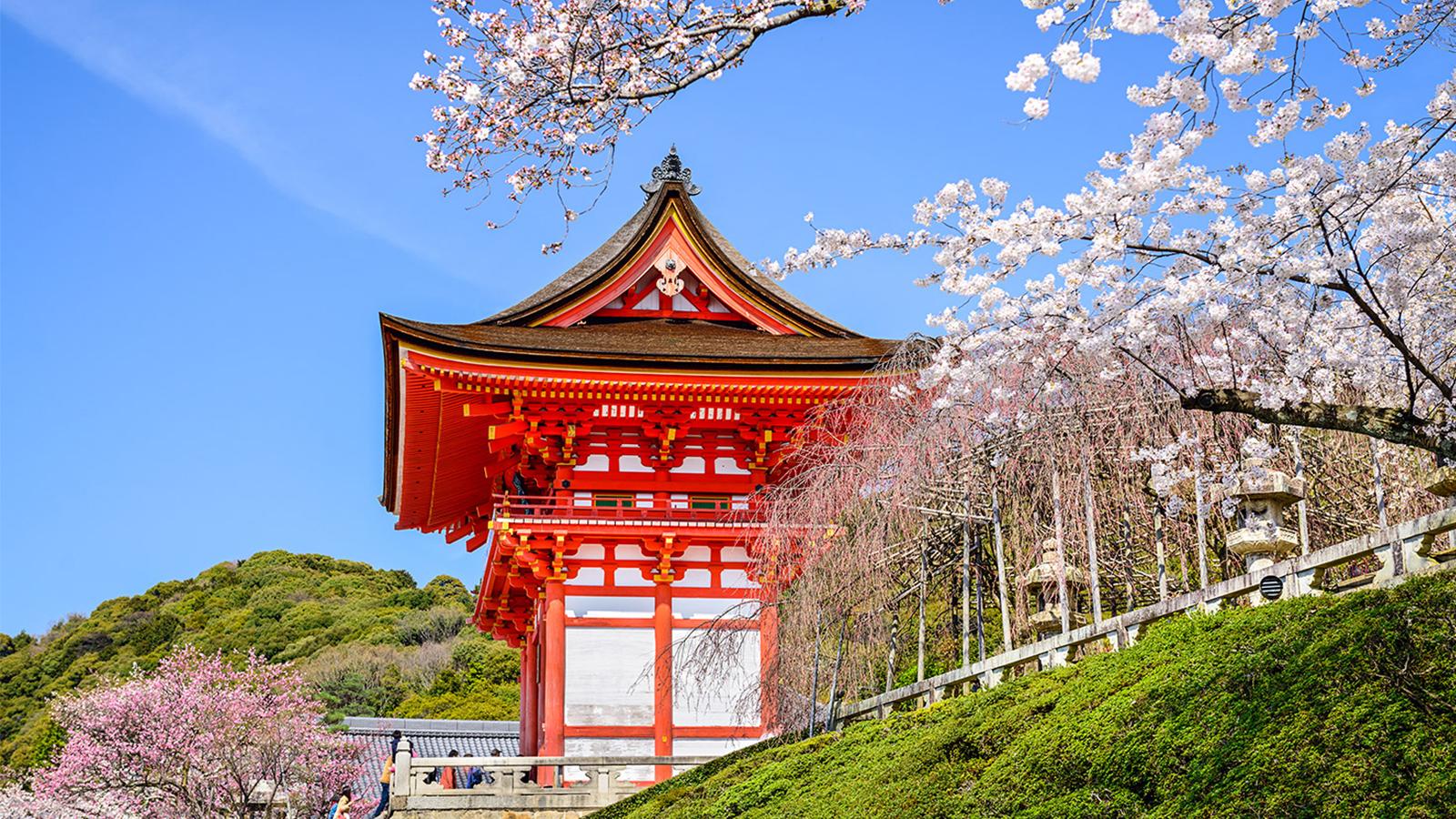 Kinh nghiệm du lịch Nhật Bản chi tiết nhất